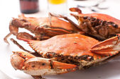Boiled crabs for dinner — Stock Photo