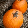 Two pumpkins on hay — Stock Photo