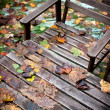 Bench and table covered with fallen leaves - Stock Photo