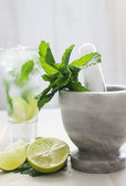 Lime drink with mortar and pestle vertical — Stock Photo