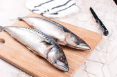 Cutting board with raw mackerel and knife — Stock Photo