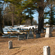 Old cemetery in woods — Stock Photo
