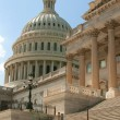 Stock Photo: Capitol building in Washington DC