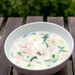 Russian traditional cold summer soup — Stock Photo