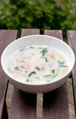 Summer cold russian soup — Stock Photo