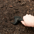 Digging soil with gardening tool — Stock Photo