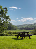 Wooden picnic table on green grass — Stock Photo