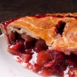 Berries and rhuharb pie crust — Stockfoto