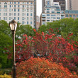 Central park with street lamp and bright trees — Stock Photo