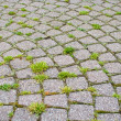 Stock Photo: Stone paved road with grass