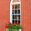 Brown brick house window and flowers — Stock Photo #32171127