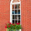 Brown brick house window and flowers — Stock Photo