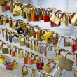 Love Locks — Stock Photo #18951607