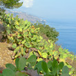 Taormina — Stock Photo #20878575