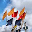 Fishery flags — Stock Photo #23457848