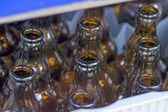 Empty beer bottles — Stock Photo