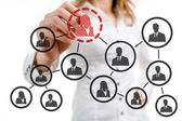 Organizational chart — Stock Photo