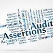 Audit Assertions — Stockvektor