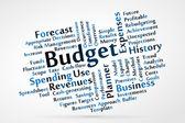 Budget — Stock Vector