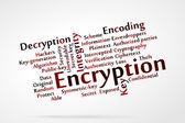 Encryption — Stock Vector