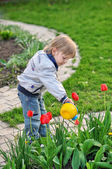 Weinig tuinman — Stockfoto