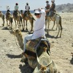 Means of transportation in the desert — Stock Photo