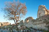 Ukraine, Crimea, the ruins of the ancient city — Stock Photo