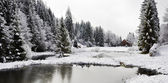 Panorama of a winter morning in the Carpathians — Stockfoto