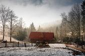 Winter forest in Carpathians — Stockfoto