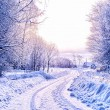 Winter road in snow — Stock Photo