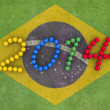 world cup 2014 — Stock Photo #29144075