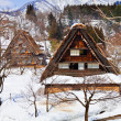 Cottage at Ogimachi Village in Shirakawago — Stock Photo #31157091