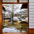 Room with the Garden View in a Japanese House  — Stock Photo