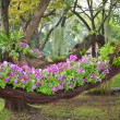 Stock Photo: Floats flowerbed