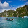 Long Tailed Boat at Phi Phi island, Thailand — Stock Photo #31516187