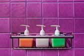 Bathroom Accessories — Stock Photo