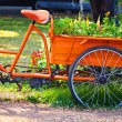Flowers on The back of a Tricycle  — Stock fotografie