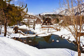 Small Swamp Surrounded with Snow at Ogimachi Village in Shirakawago — Stock Photo