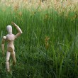 Stock Photo: Wood dummy lost in grass field