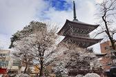 Hida Kokubunji Temple in Takayama — Stock Photo