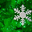 Snow Flake on a Christmas Tree  — Stockfoto