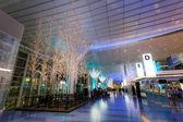 Tokyo, Japan - November 26 2013: Lights and illuminations are de — Stock Photo