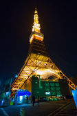 Tokyo, Japan - November 24 2013: Celebrating the 55th year in Ja — Stock Photo