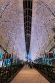 Tokyo, Japan - November 26 2013: Lights and illuminations are de — Stock Photo