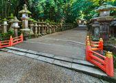 奈良の春日大社石灯籠 — ストック写真