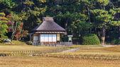 Koraku-en garden in Okayama — Stock Photo