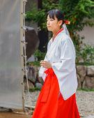 Miko at Ikuta-jinja in Kobe — Stock Photo