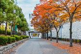 Parque do castelo de osaka, — Foto Stock