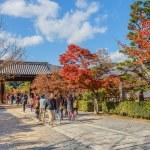 Tenryuji Sogenchi Pond Garden a UNESCO World Heritage Site in Kyoto — Stock Photo #41013617