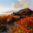 Kiyomizu-dera Temple in Kyoto — Stock Photo #41663791